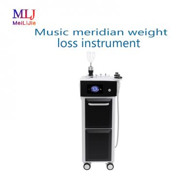 Music meridian weight loss instrument