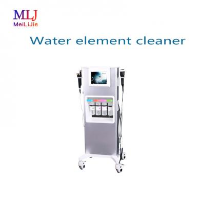Water element cleaner